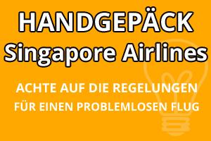 Handgepäck Regelungen Singapore Airlines