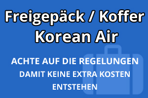 Freigepäck Koffer Korean Air