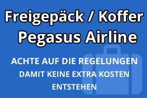 Freigepäck Koffer Pegasus Airline