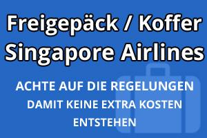 Freigepäck Koffer Singapore Airlines